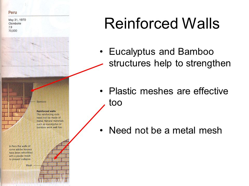 Reinforced Walls Eucalyptus and Bamboo structures help to strengthen