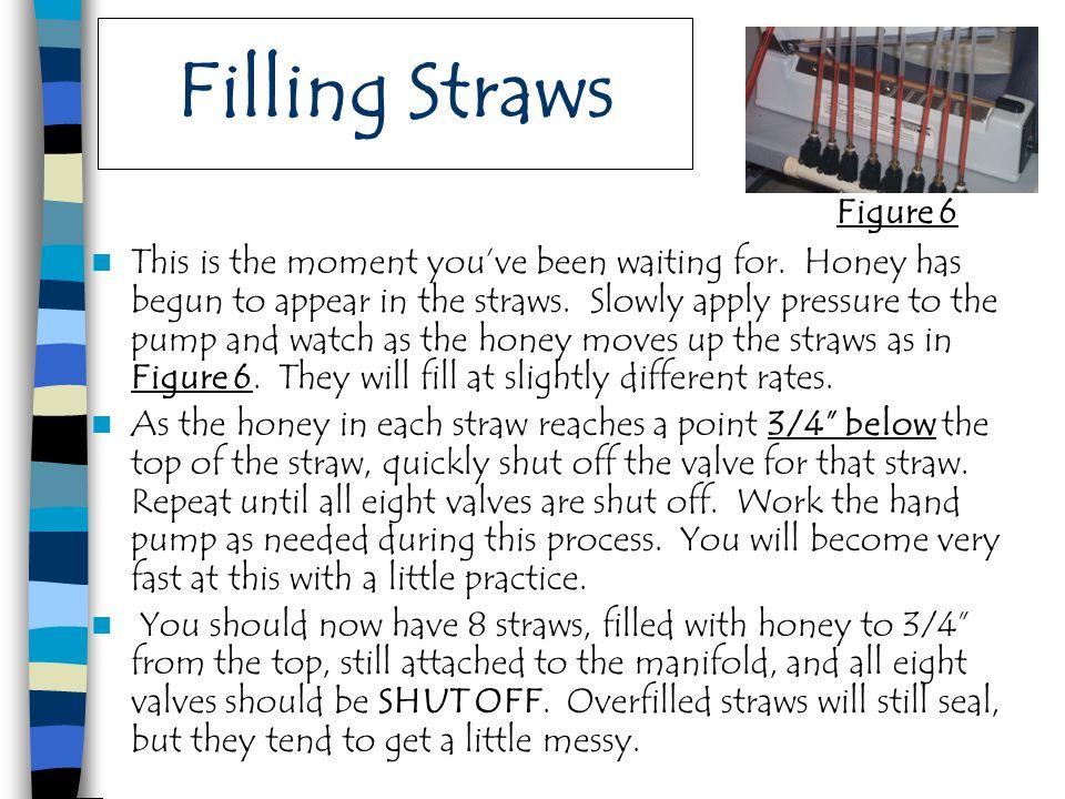Filling Straws Figure 6.