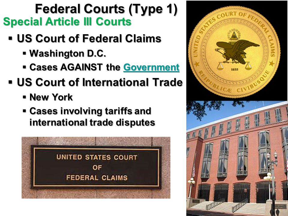 Federal Courts (Type 1) Special Article III Courts