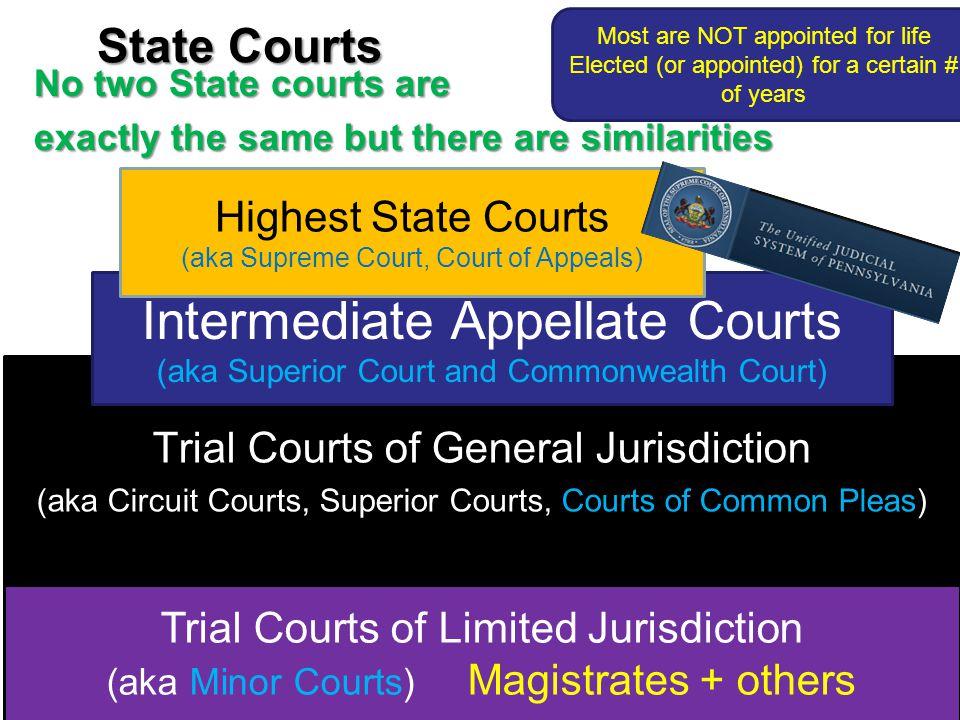 Intermediate Appellate Courts