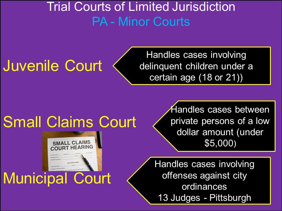 Juvenile Court Small Claims Court Municipal Court