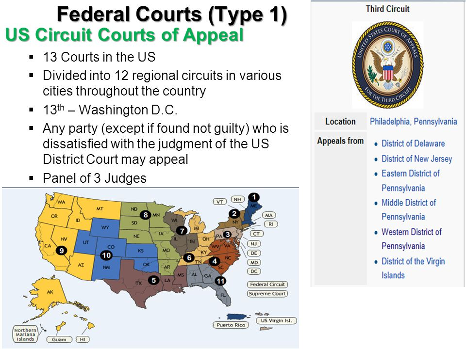 Federal Courts (Type 1) US Circuit Courts of Appeal