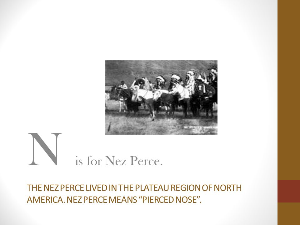 N is for Nez Perce. The nez perce lived in the plateau region of north america.