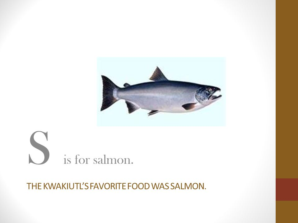 The kwakiutl's favorite food was salmon.