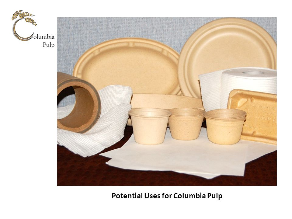 Potential Uses for Columbia Pulp