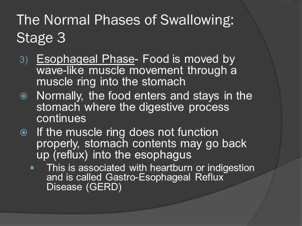 The Normal Phases of Swallowing: Stage 3