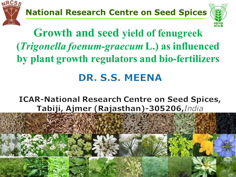 ICAR-National Research Centre on Seed Spices,