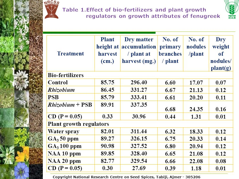 Plant height at harvest
