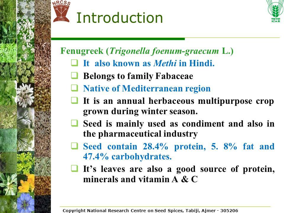 Introduction Fenugreek (Trigonella foenum-graecum L.)
