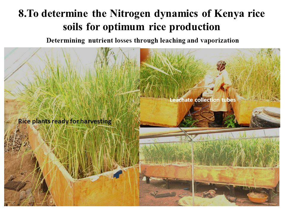 Determining nutrient losses through leaching and vaporization