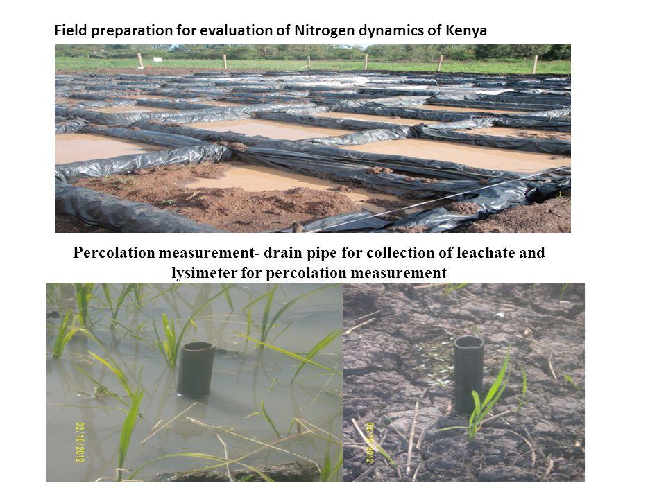 Field preparation for evaluation of Nitrogen dynamics of Kenya