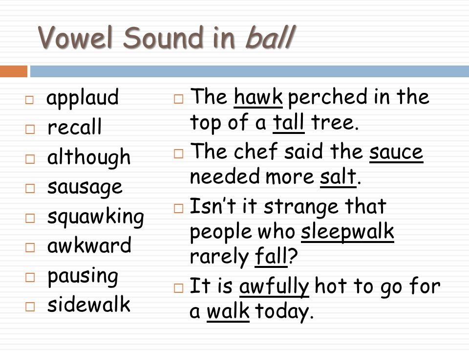 Vowel Sound in ball The hawk perched in the top of a tall tree. recall