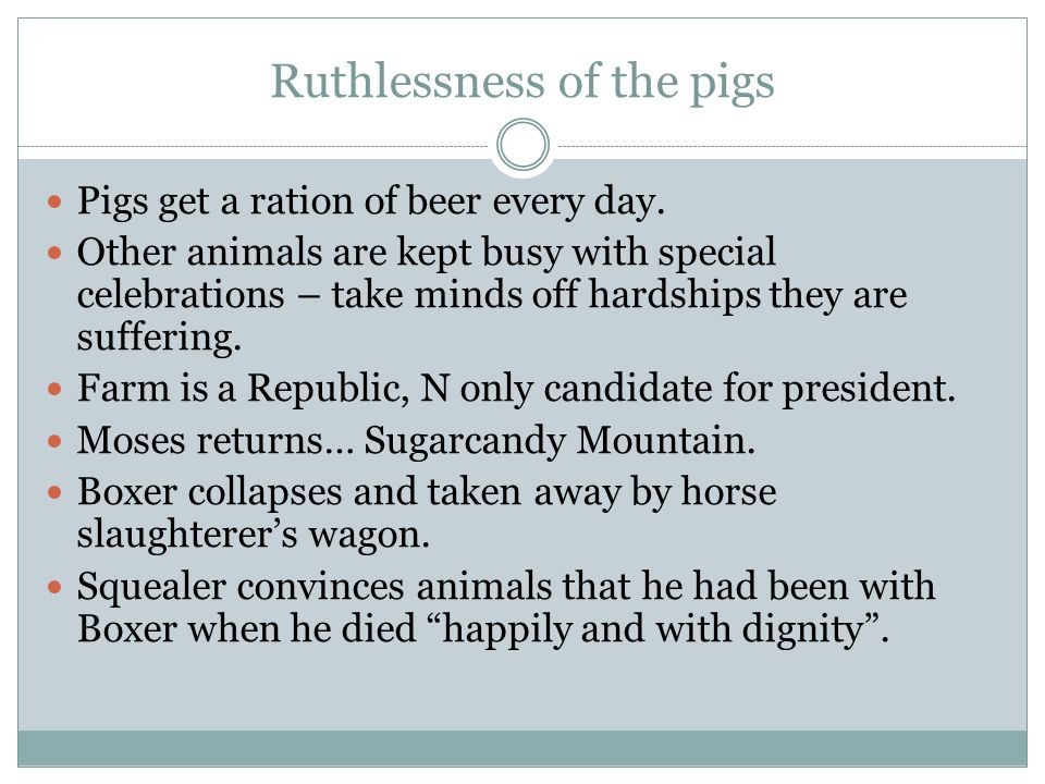 Ruthlessness of the pigs