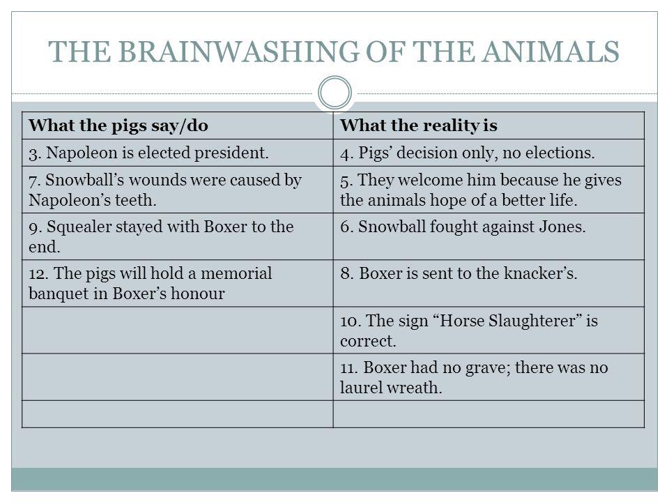 THE BRAINWASHING OF THE ANIMALS