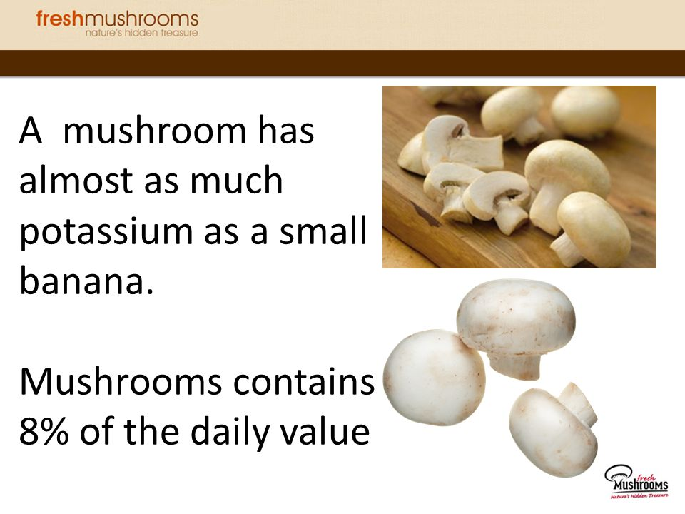 A mushroom has almost as much