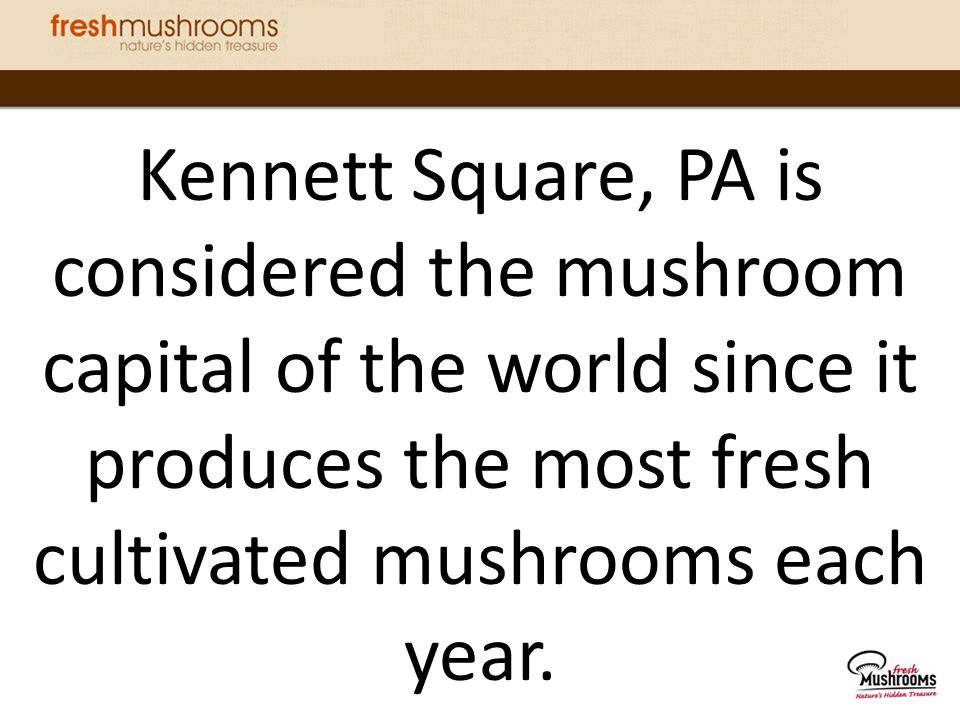 Kennett Square, PA is considered the mushroom capital of the world since it produces the most fresh cultivated mushrooms each year.