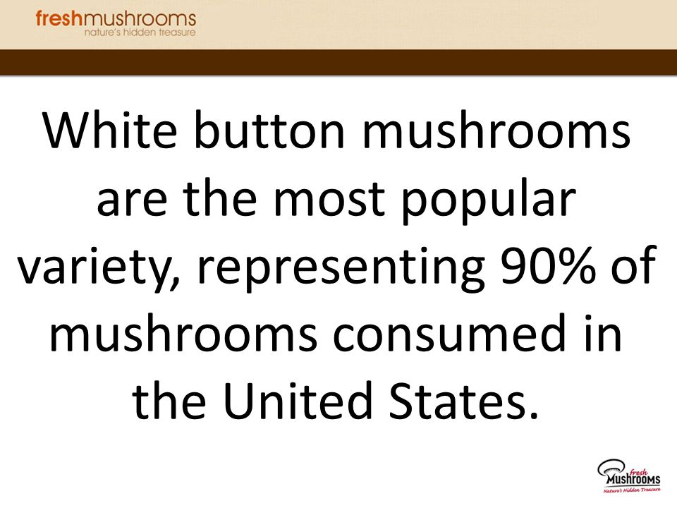 White button mushrooms are the most popular variety, representing 90% of mushrooms consumed in the United States.