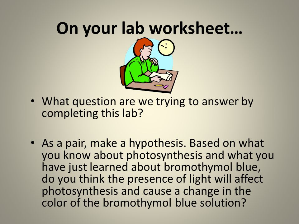 On your lab worksheet… What question are we trying to answer by completing this lab