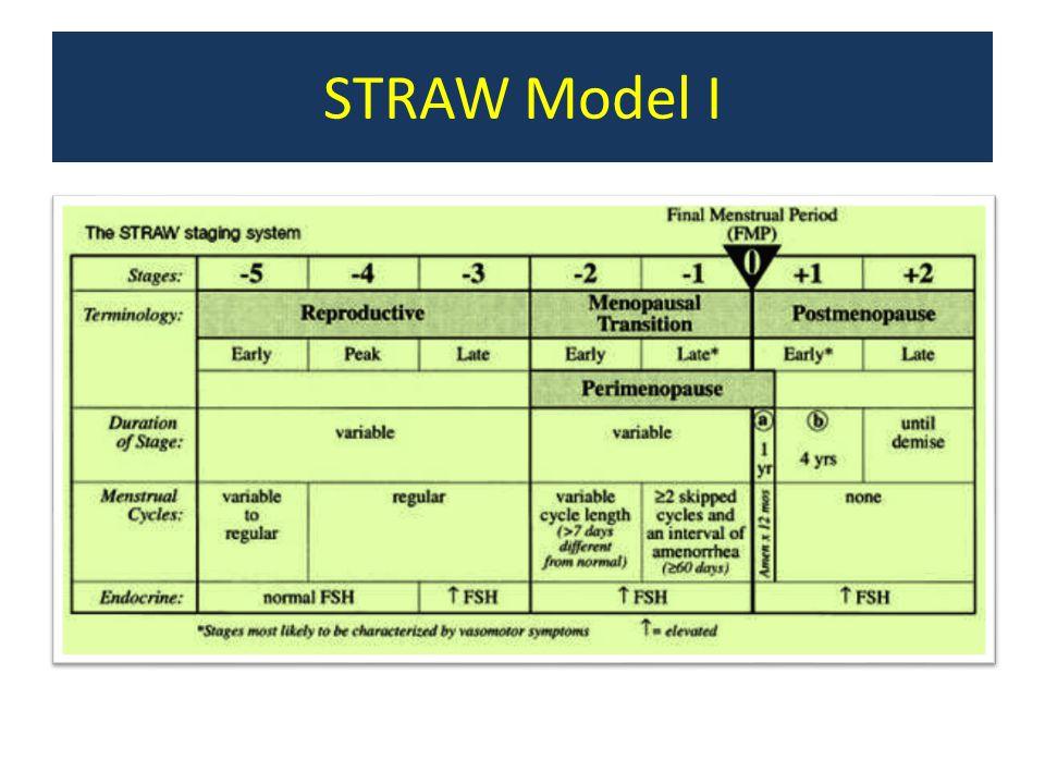 STRAW Model I