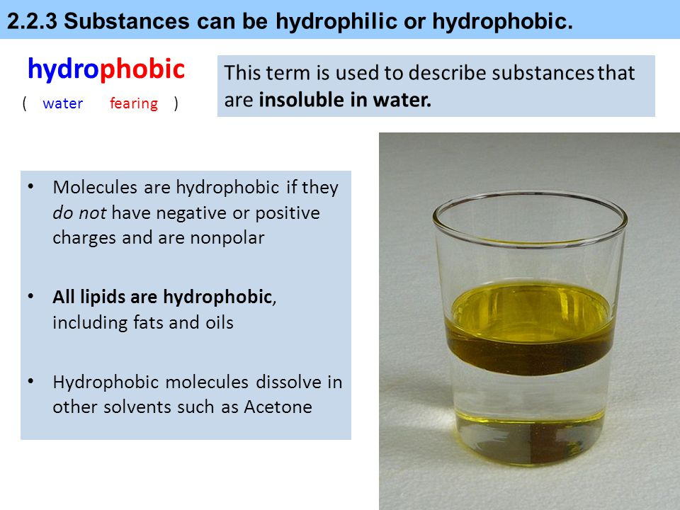 2.2.3 Substances can be hydrophilic or hydrophobic.