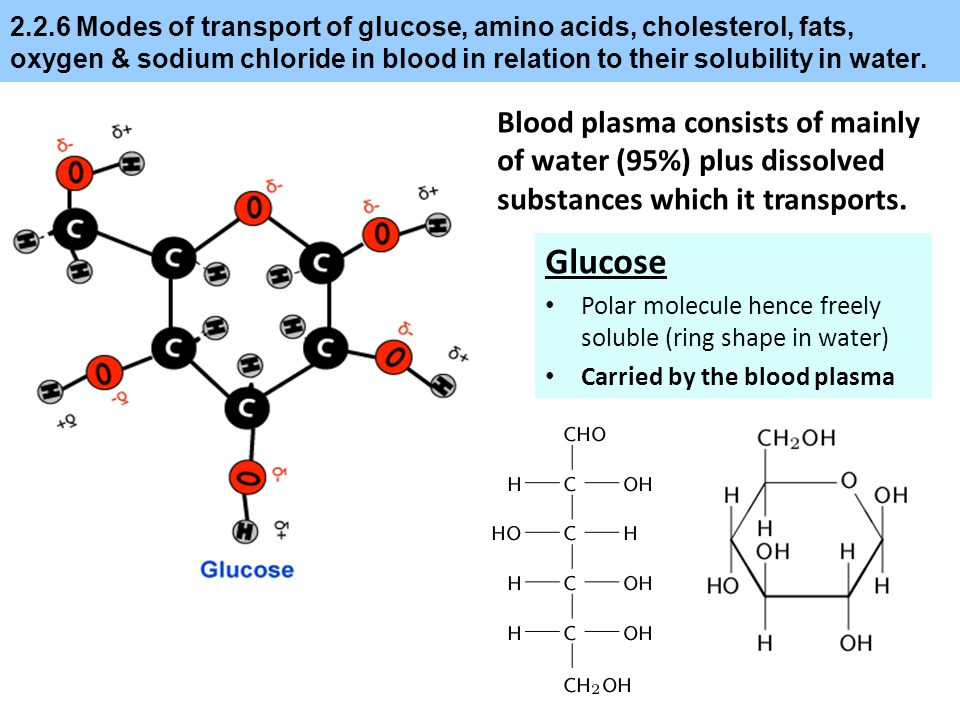 2.2.6 Modes of transport of glucose, amino acids, cholesterol, fats, oxygen & sodium chloride in blood in relation to their solubility in water.