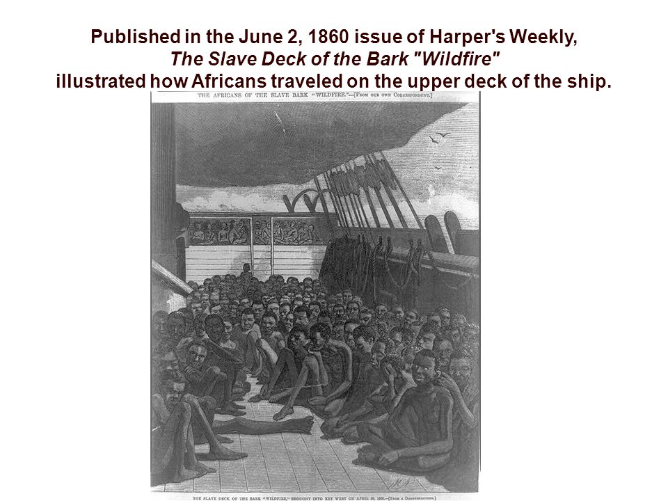 Published in the June 2, 1860 issue of Harper s Weekly, The Slave Deck of the Bark Wildfire illustrated how Africans traveled on the upper deck of the ship.