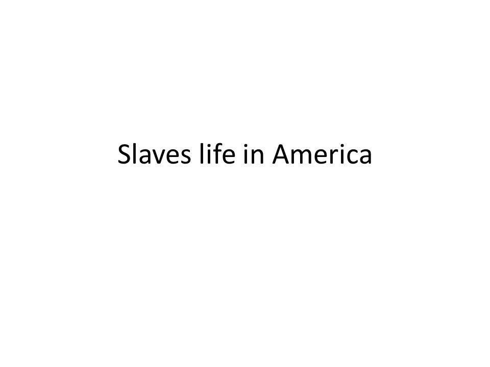 Slaves life in America