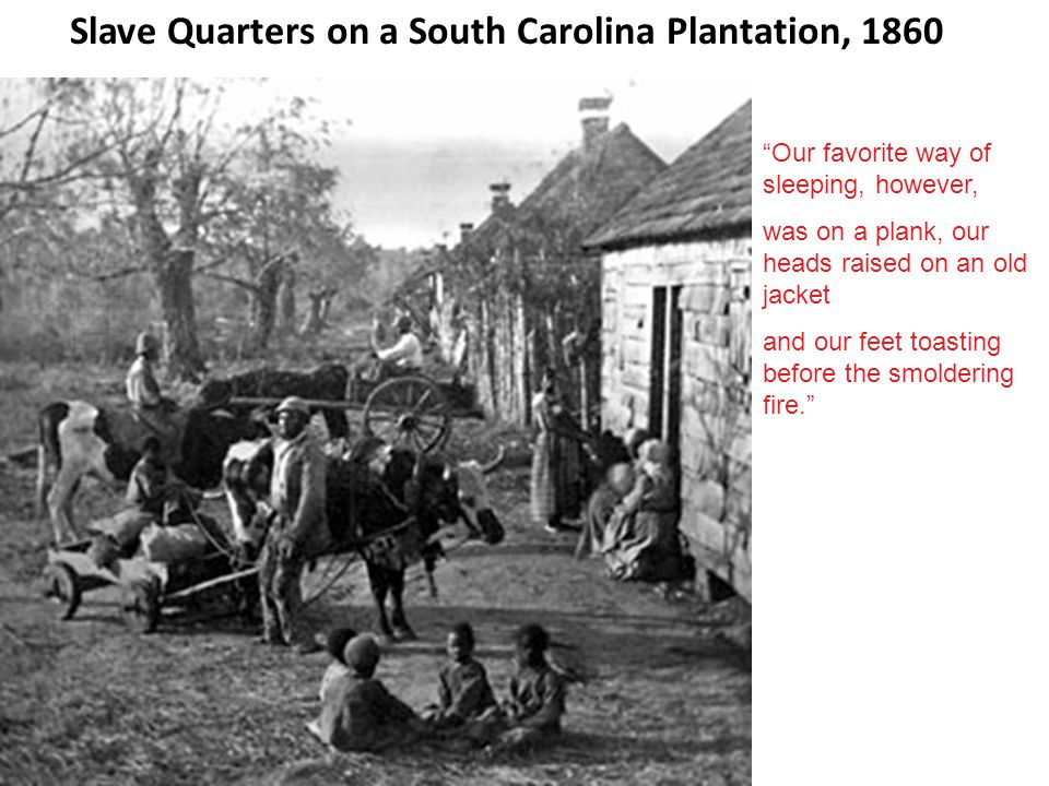 Slave Quarters on a South Carolina Plantation, 1860