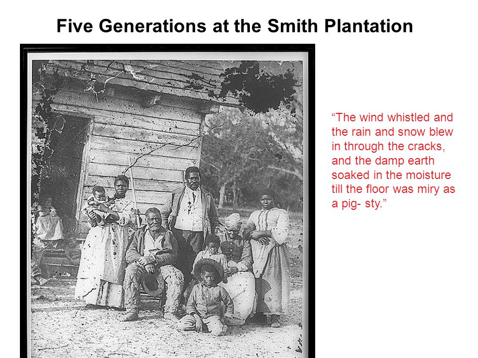 Five Generations at the Smith Plantation