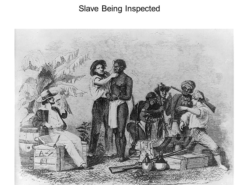 Slave Being Inspected