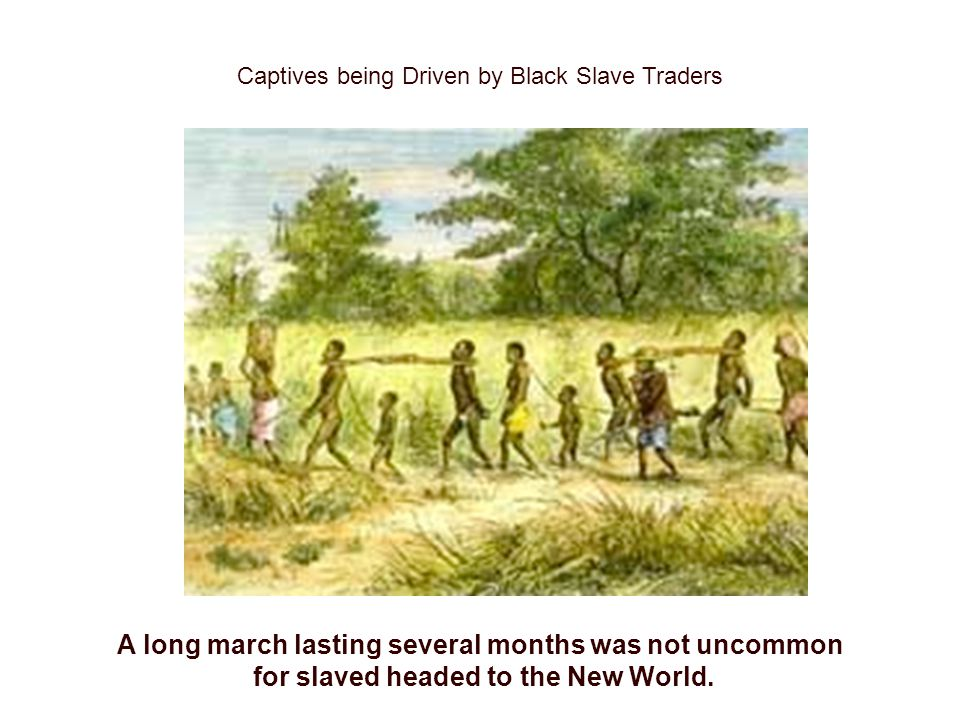 Captives being Driven by Black Slave Traders