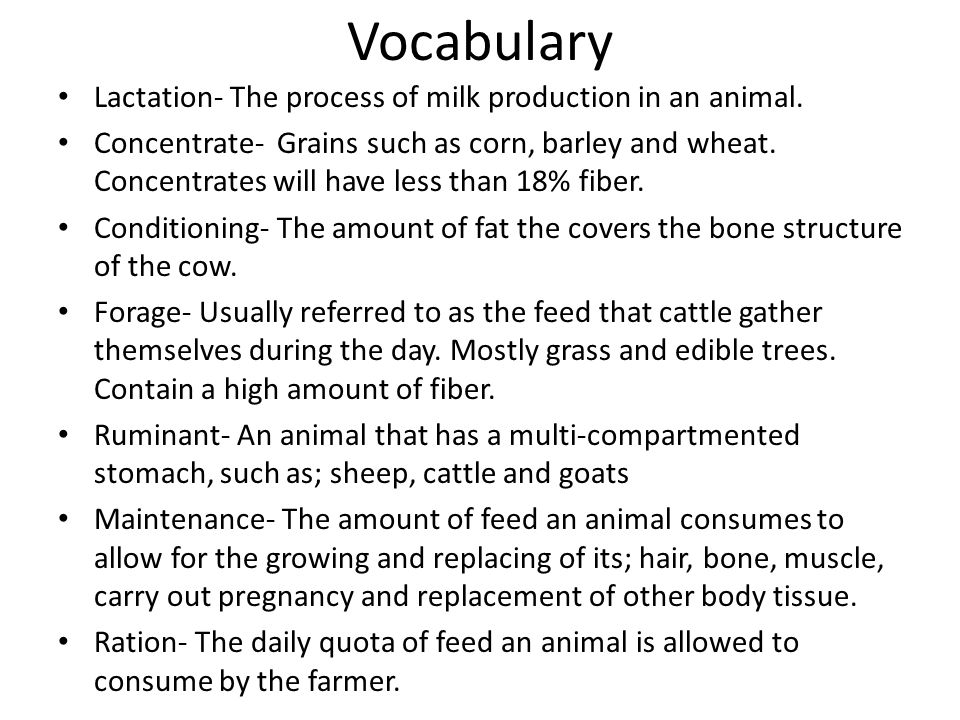 Vocabulary Lactation- The process of milk production in an animal.