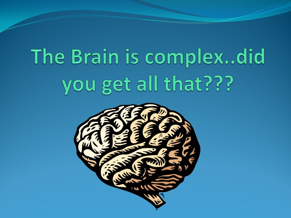 The Brain is complex..did you get all that