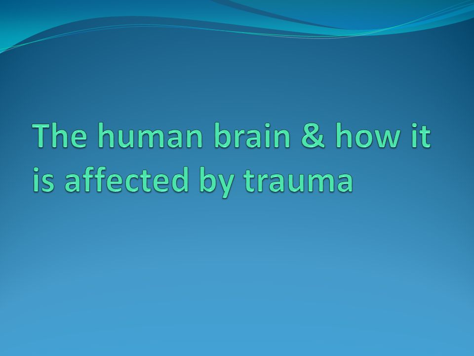 The human brain & how it is affected by trauma
