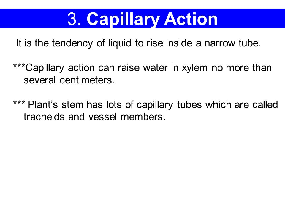 3. Capillary Action It is the tendency of liquid to rise inside a narrow tube.
