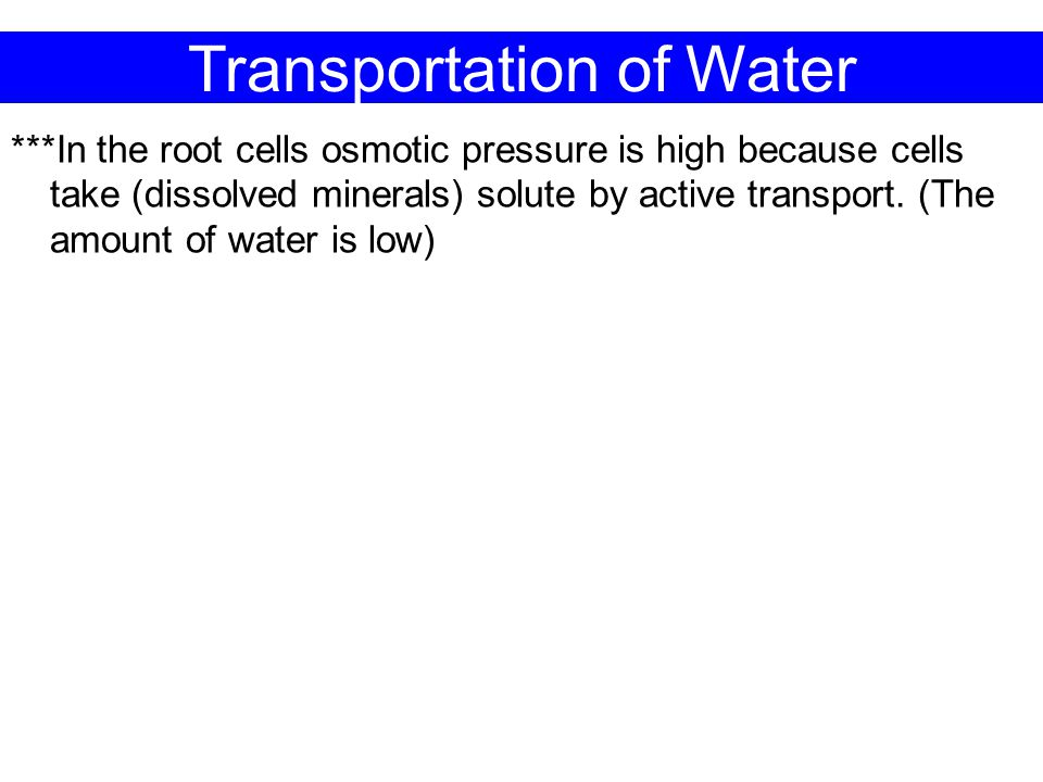 Transportation of Water