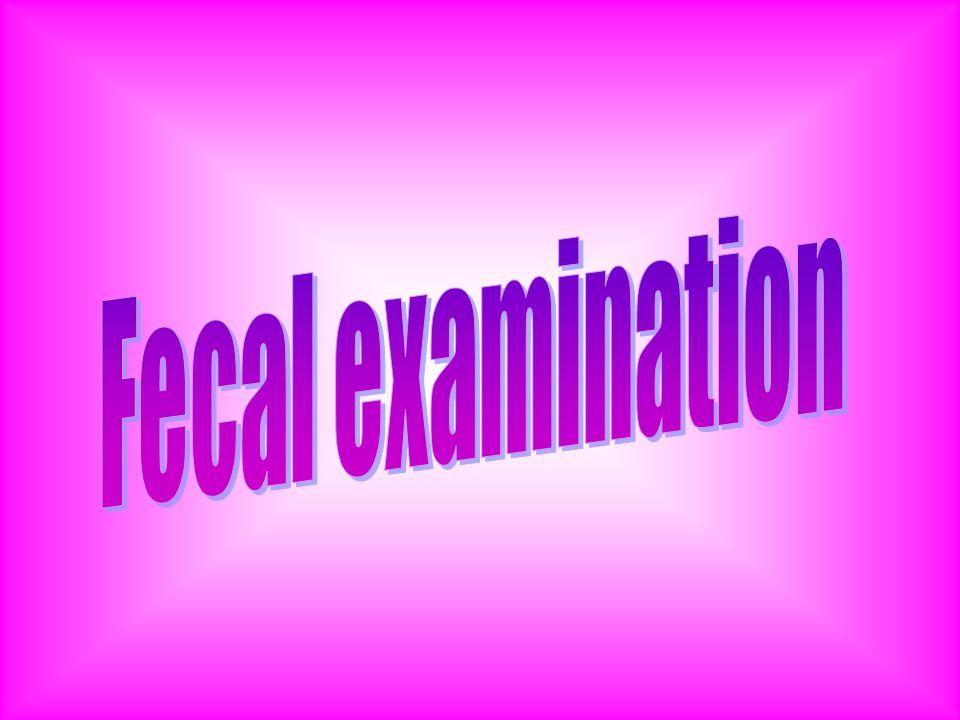 Fecal examination