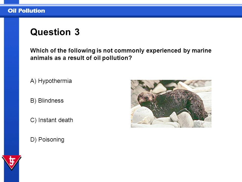 Question 3. Which of the following is not commonly experienced by marine animals as a result of oil pollution