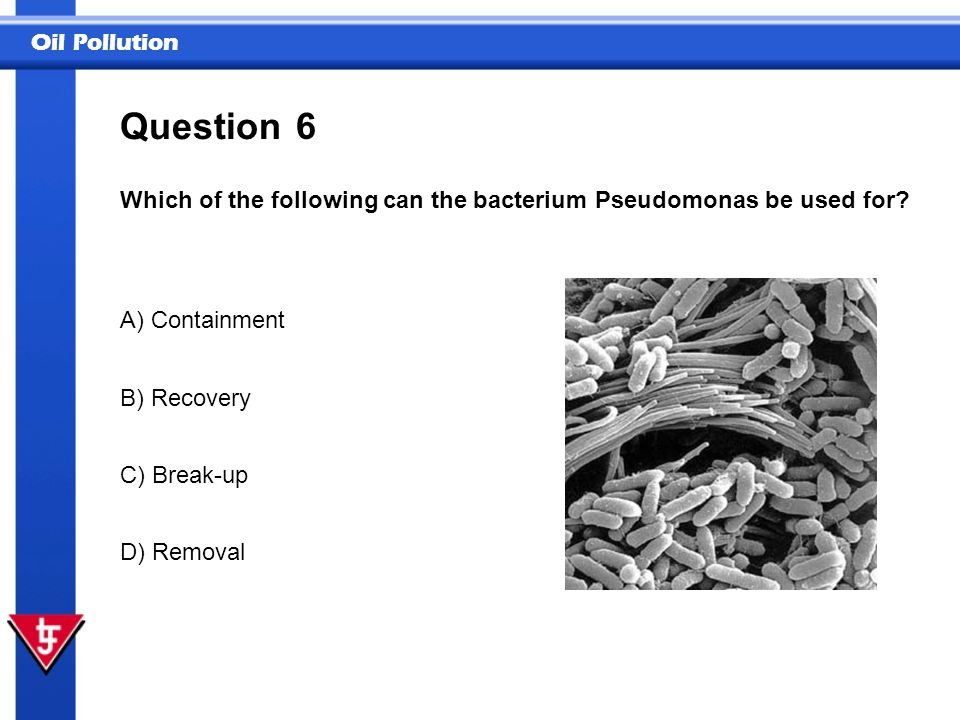Question 6. Which of the following can the bacterium Pseudomonas be used for A) Containment. B) Recovery.