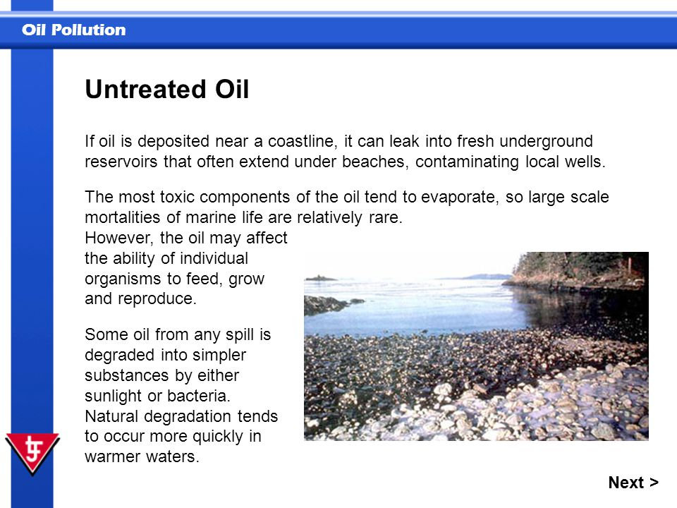 Untreated Oil