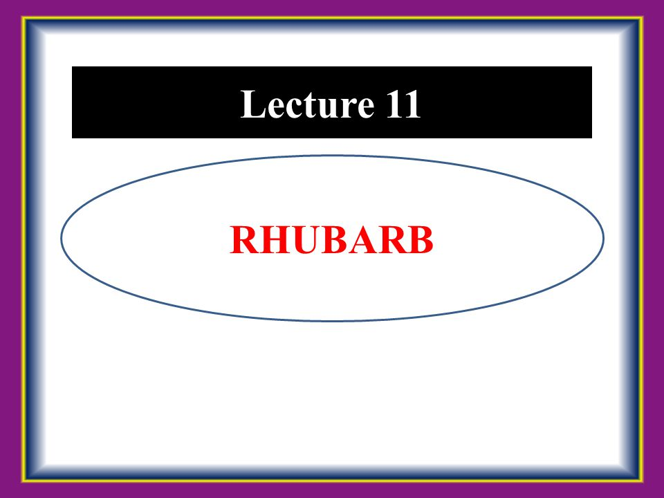 Lecture 11 RHUBARB