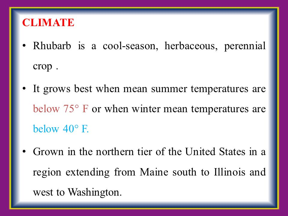 CLIMATE Rhubarb is a cool-season, herbaceous, perennial crop .