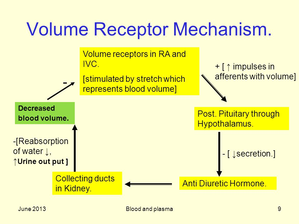 Volume Receptor Mechanism.