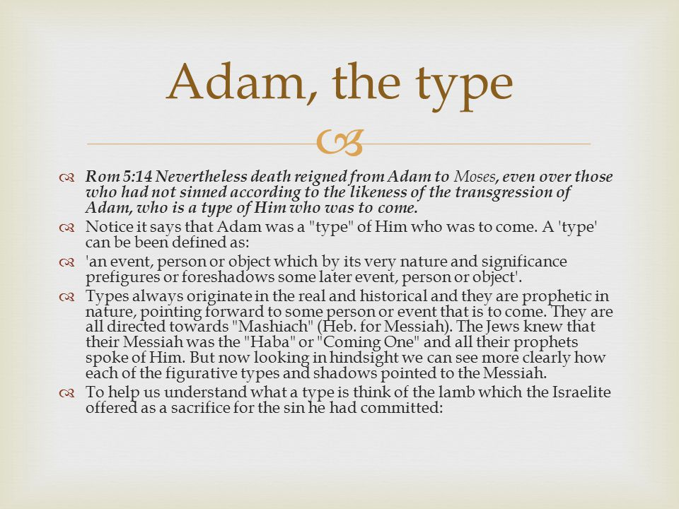 Adam, the type
