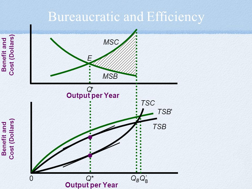 Bureaucratic and Efficiency
