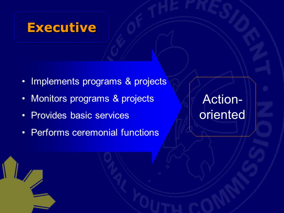 Executive Action-oriented Implements programs & projects