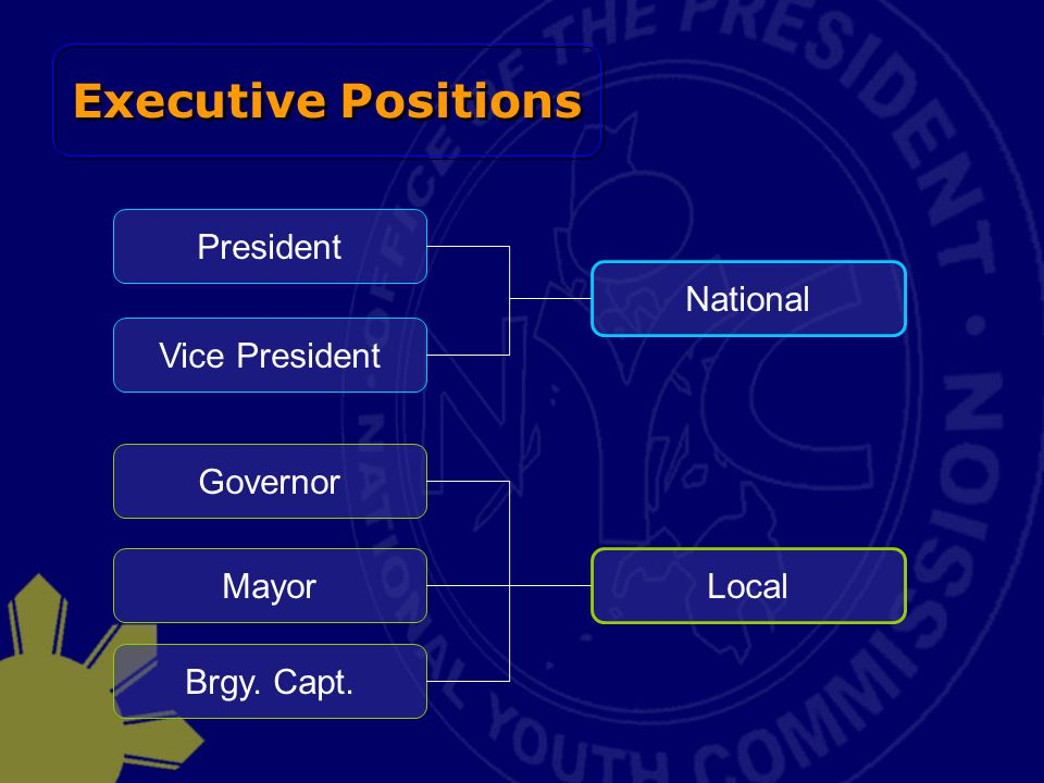 Executive Positions President Vice President National Governor Mayor