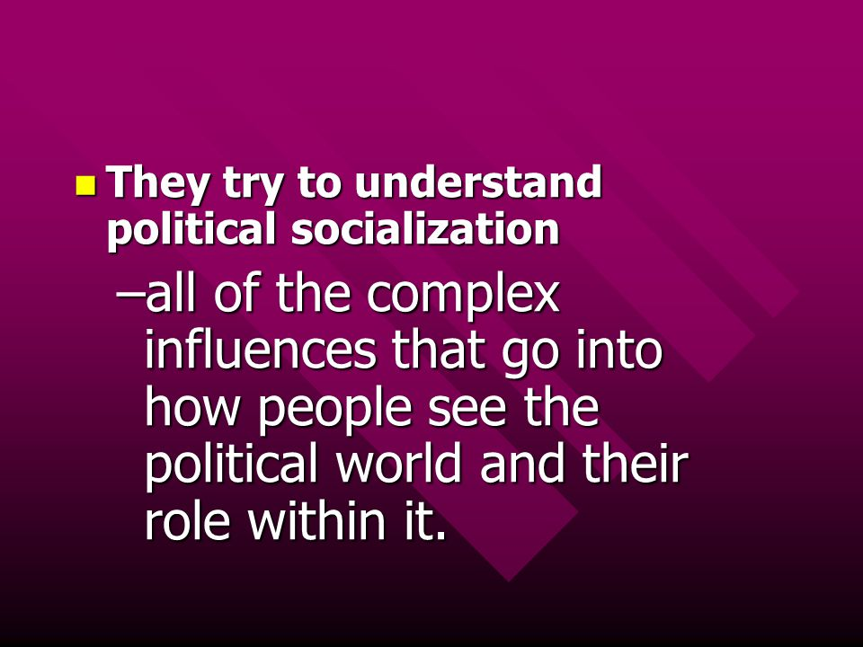 They try to understand political socialization