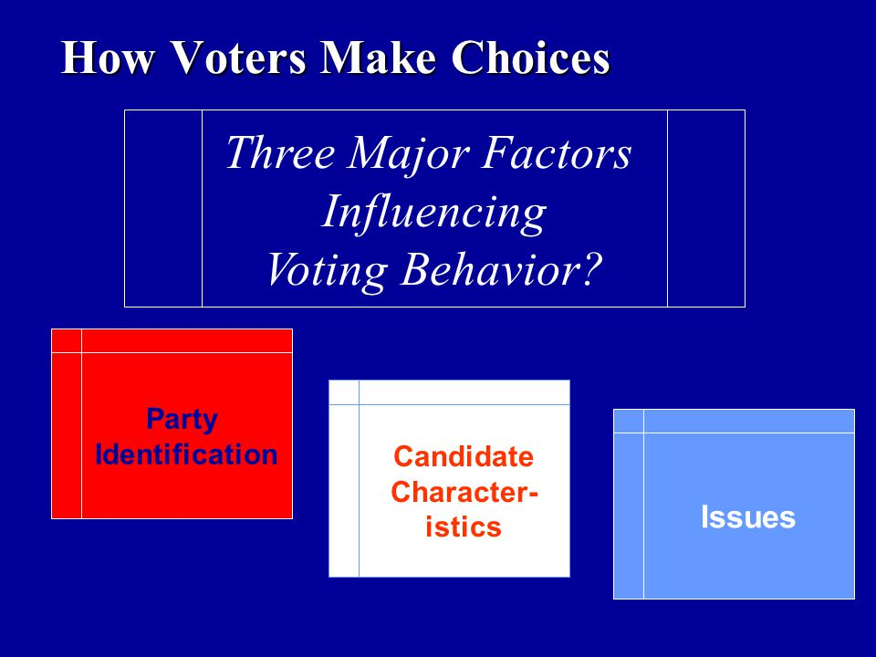 How Voters Make Choices