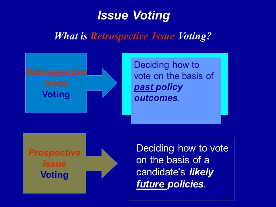 What is Retrospective Issue Voting